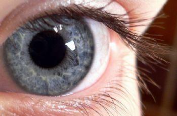 [Image: pupil-dilation.jpg]